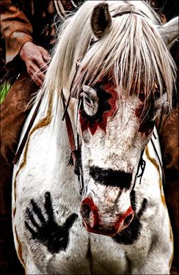 caballo indio