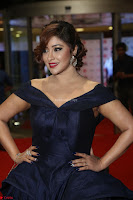 Payal Ghosh aka Harika in Dark Blue Deep Neck Sleeveless Gown at 64th Jio Filmfare Awards South 2017 ~  Exclusive 107.JPG