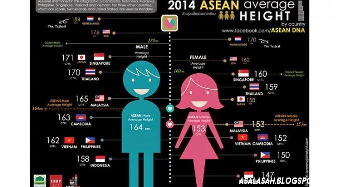 Cara, Fakta Menarik dan Rata – Rata Tinggi Badan Orang Korea