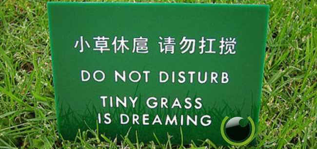 Jangan Diganggu Rumputnya Lagi Tidur