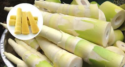 Bamboo Shoots Health