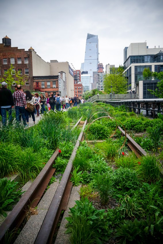 New York City, NY The High Line photo by Corey Templeton. May 2016.