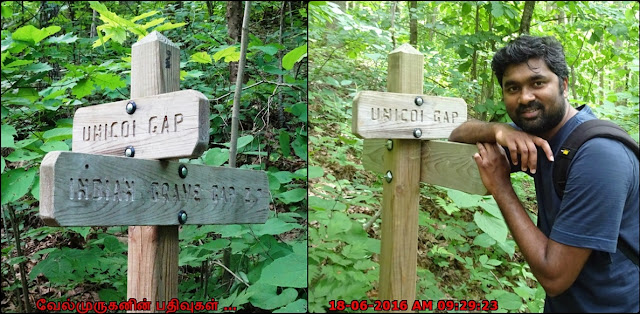 Indian Grave Gap Trail
