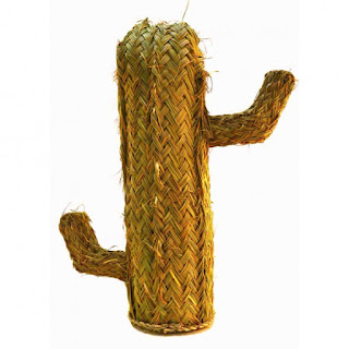 Cactus Esparto Don Tip Top