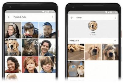 google-fotos-identificar-mascotas