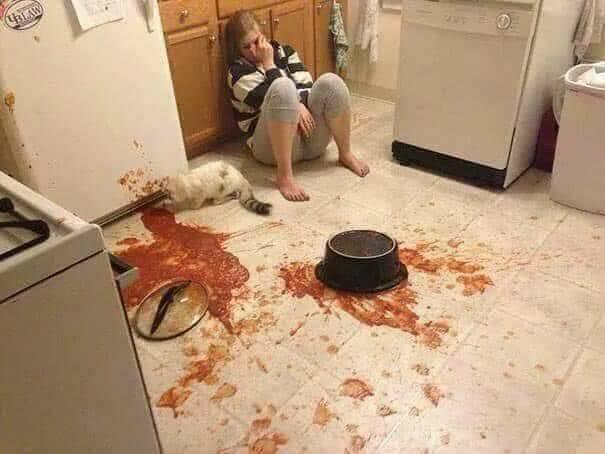 Desastres culinarios, un infierno en la cocina