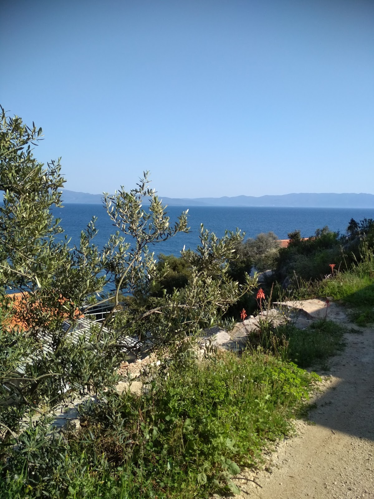 Bay Torac, Island Hvar