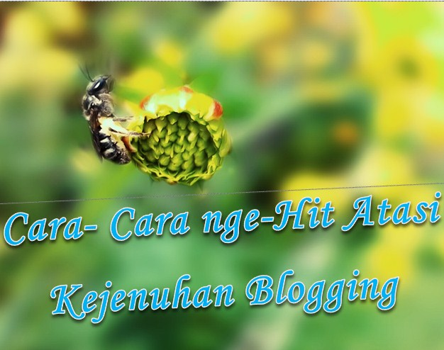 tips; trik; info; blogging