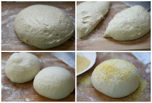 dividing and shaping the dough