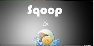 52% off Learn Ingestion in Hadoop Using Sqoop and Flume Tool