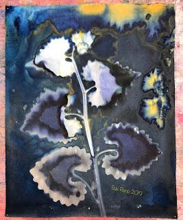 Wet cyanotype_Sue Reno_Image 589