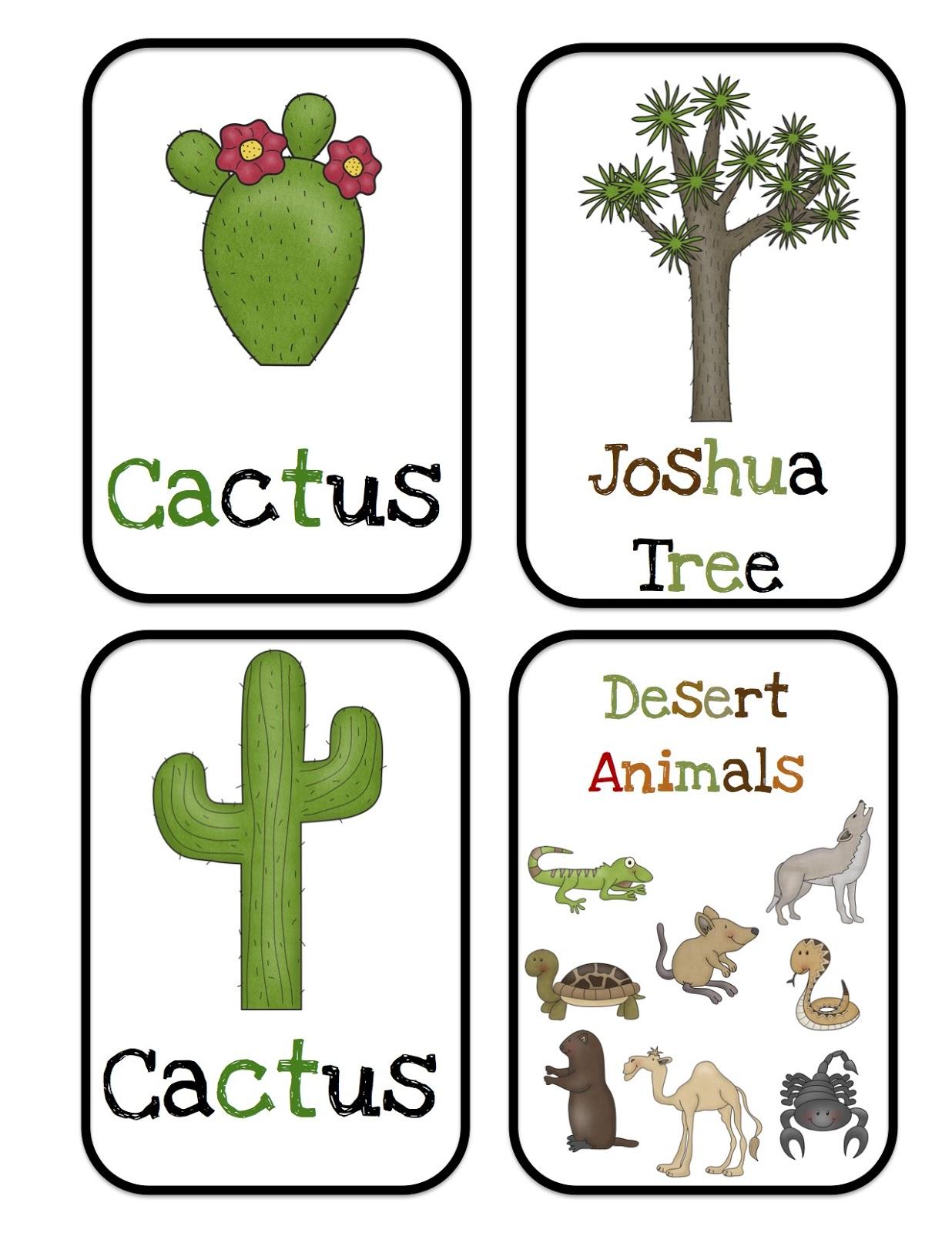 Desert Animals Bulletin Board Cards on Animals Theme For Kindergarten Worksheets