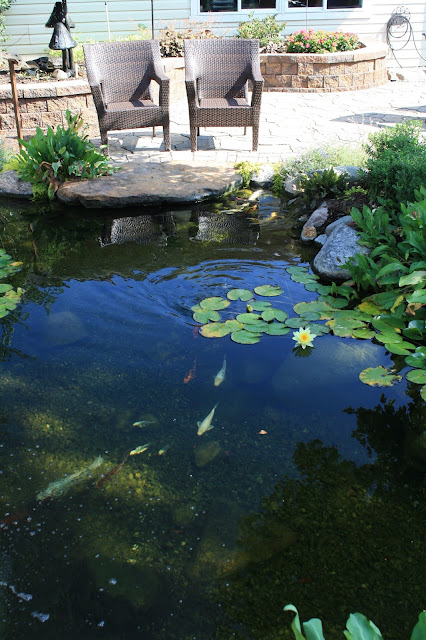 ideal pond depth