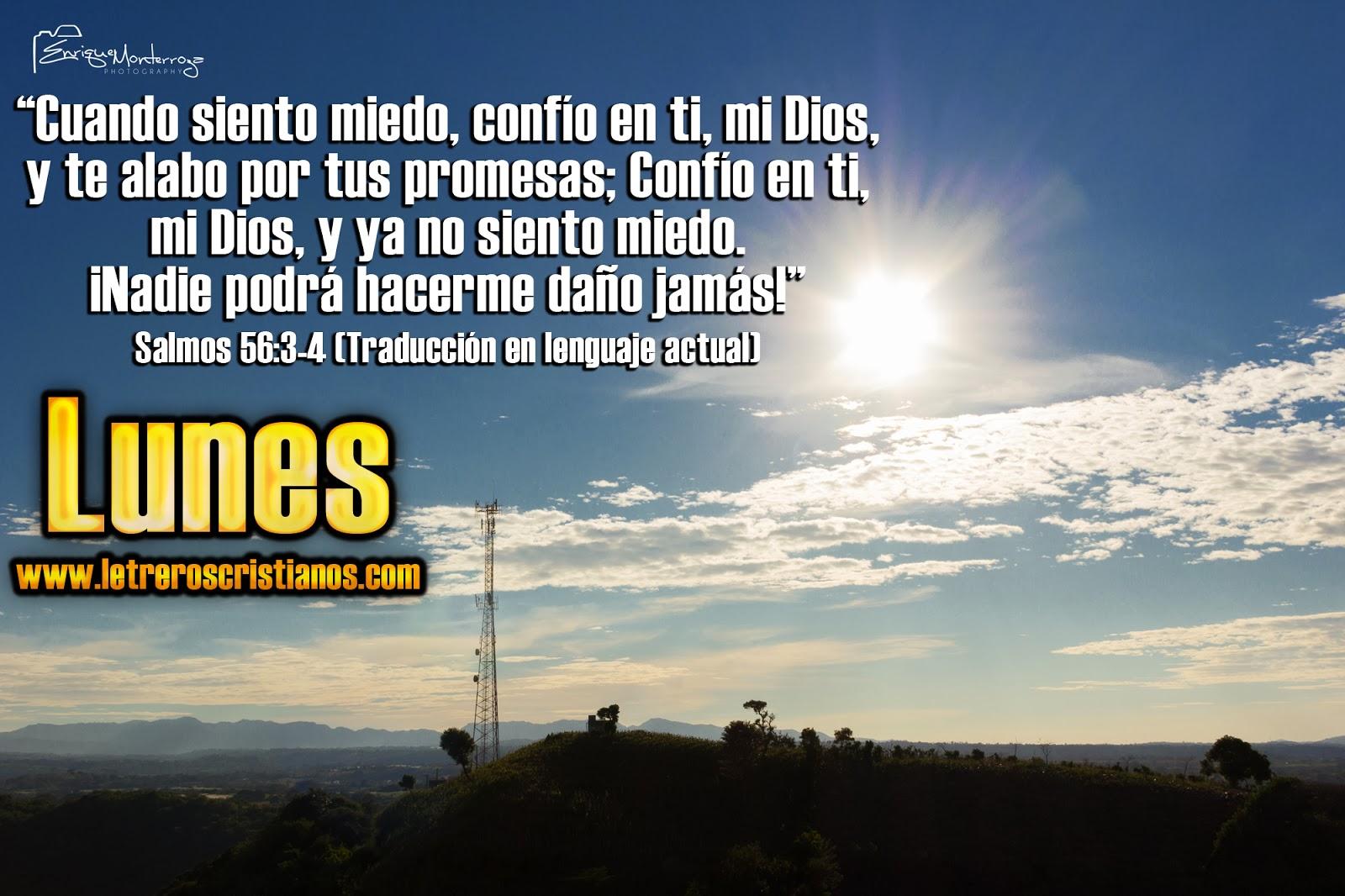 Imagen - Salmos 56:3-4 TLA