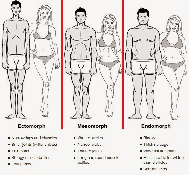 Health & Wellness: What's your body type?
