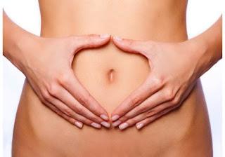 pentingnya usus sehat
