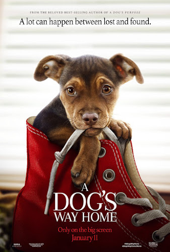 A Dog's Way Home (BRRip 720p Ingles Subtitulada) (2019)