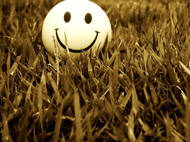 besplatne pozadine za desktop 1024x768 free download smajlić u travi
