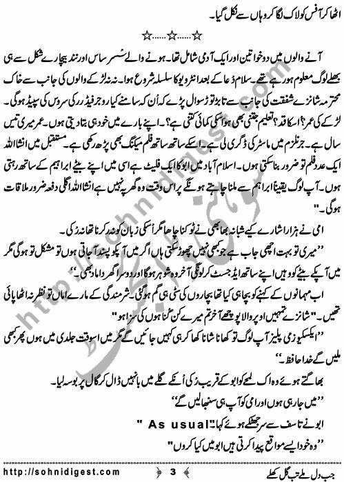Forced Marriage Novel Jab Dil Milay Tab Gul Khilay By