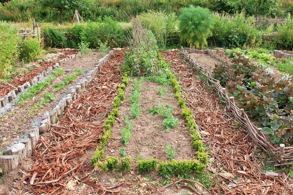 jardin des simples du parc historique d'Ornavik à Hérouville Saint Clair près de Caen