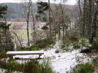A bench for walkers on Craigendarroch