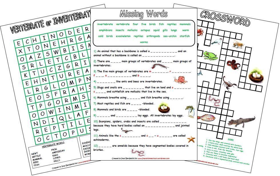 Iman 39 S Home School Animal Classification Activity Worksheets