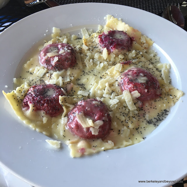 casunzei ravioli at Bellanico Restaurant & Wine Bar in Oakland, California