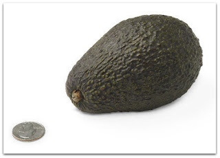 baby is size of avocado