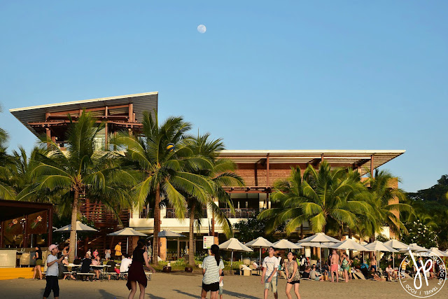 coconut trees, beach, beach umbrellas, adults playing beach volleyball, restaurant