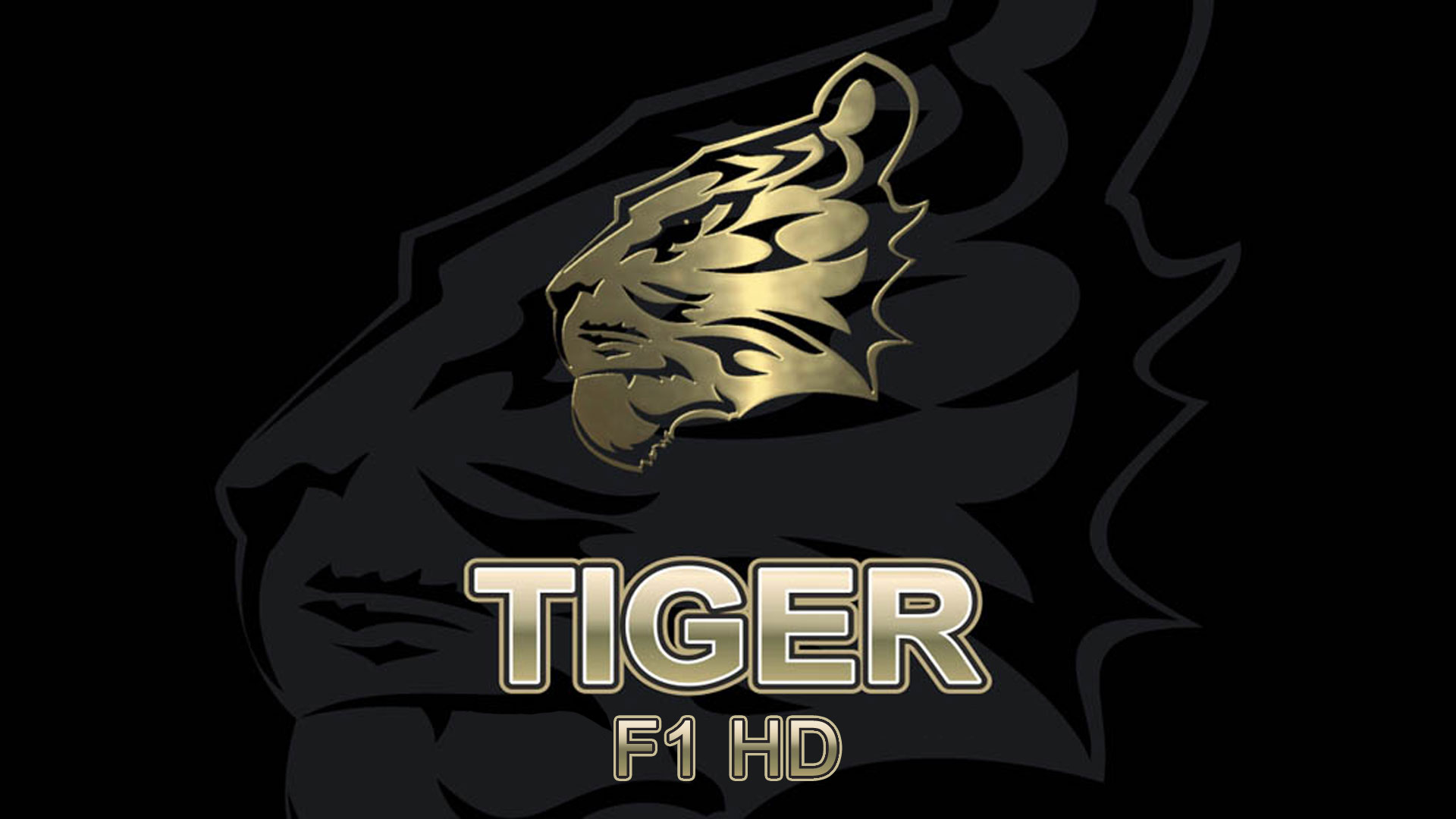 Tiger F1 HD Software New Update Firmware Receiver