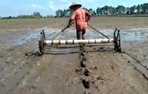 Teknologi Berperan Aktif Dalam Memajukan Sektor Pertanian