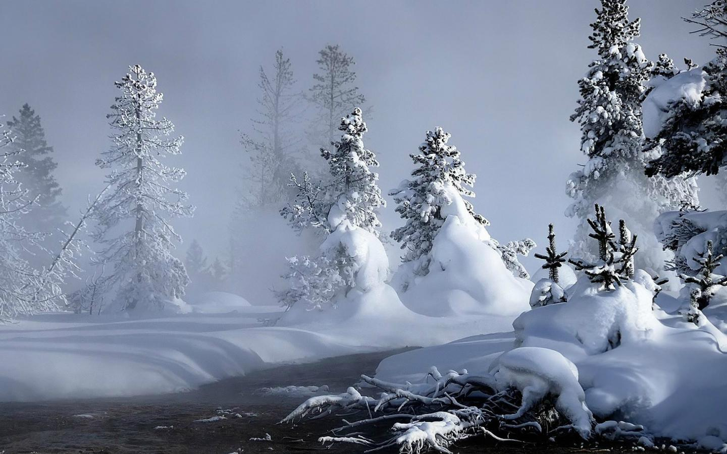 Live Winter Snow Fall Background Wallpaper Beautiful Wallpapers Snowfall Wallpaper