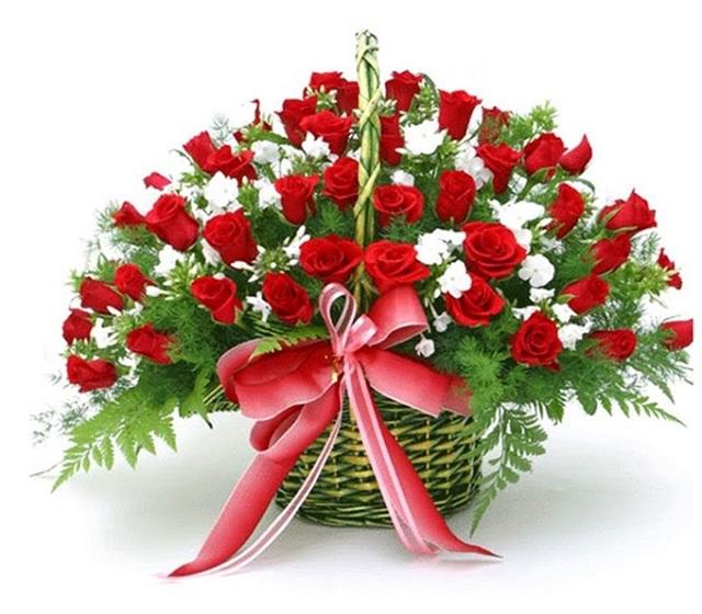 Bó hoa hồng đỏ đẹp nhất thế giới 11