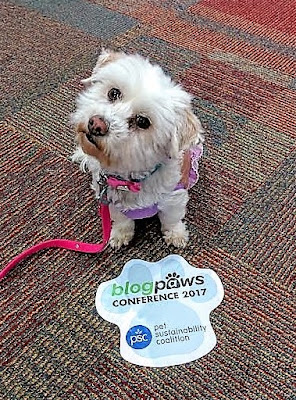 At the BlogPaws Social Media and Blogging conference, Myrtle Beach, 2017
