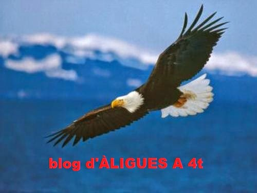 blog d'ÀLIGUES A 4t