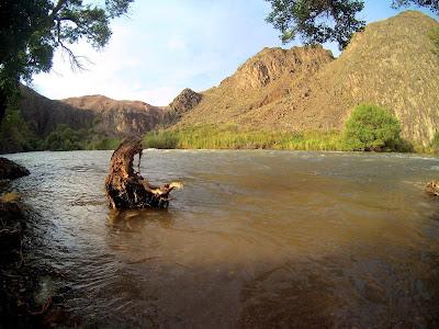 rzeka Charyn, Kanion Szaryński