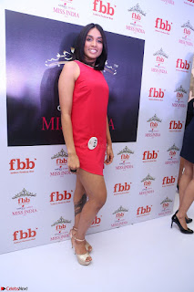 Spatika Surapaneni in Red Tight Dress at FBB Miss India 2017 finalists at Telangana auditions Feb 2017 (2).JPG