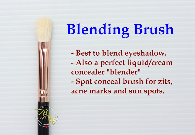 a photo of Riot Eye blending Brush