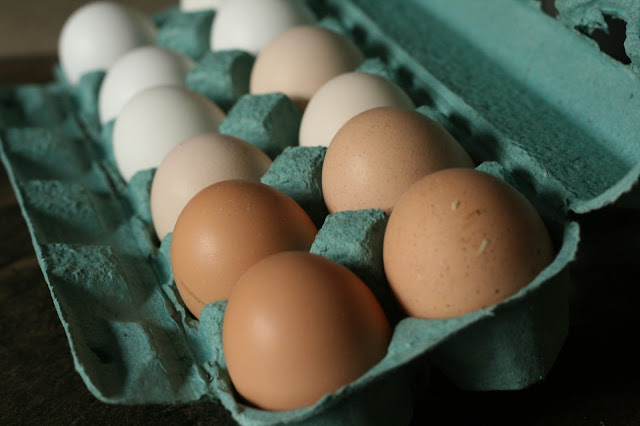 Heritage Eggs from University of Alberta Farm