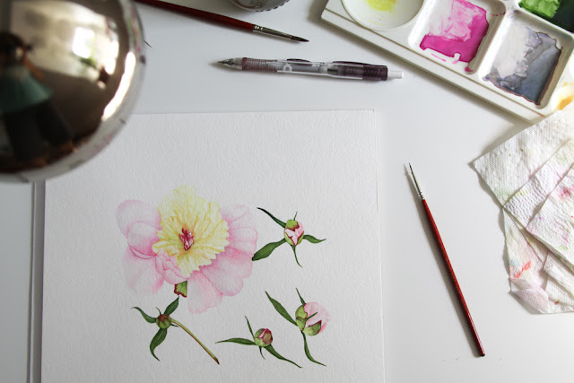 peonies, painting, watercolor, Anne Butera, My Giant Strawberry
