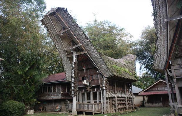 Rumah Adat Sulawesi Selatan Tongkonan Toraja