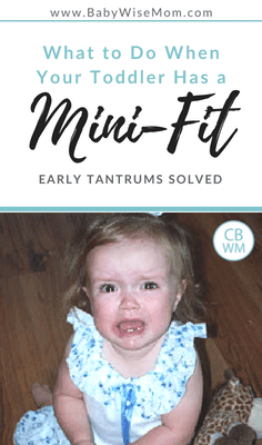 What to do when your child has a mini-fit. How to solve the early tantrums your pretoddler and toddler have. Strategies to stop tantrums.