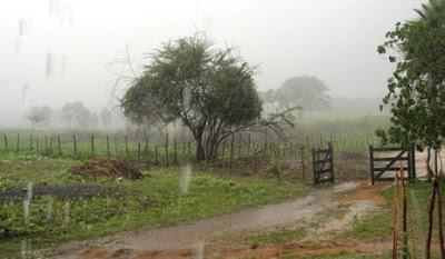 Resultado de imagem para chuvas em umarizal rn