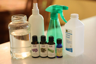 Homemade Mosquito Spray That Really Works! - I Can Teach My