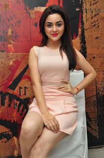 Actress Ragini sizzling Pictures 018.jpg