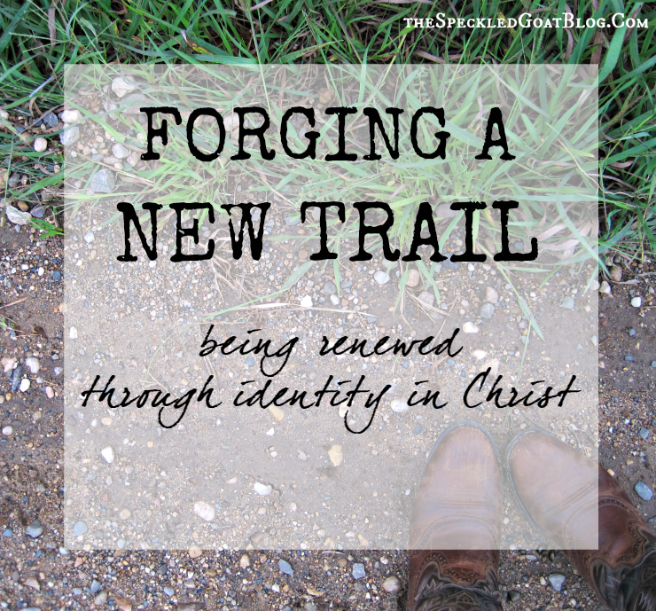 Christian devotion identity in Christ who Christians are transformed by the renewing of the mind