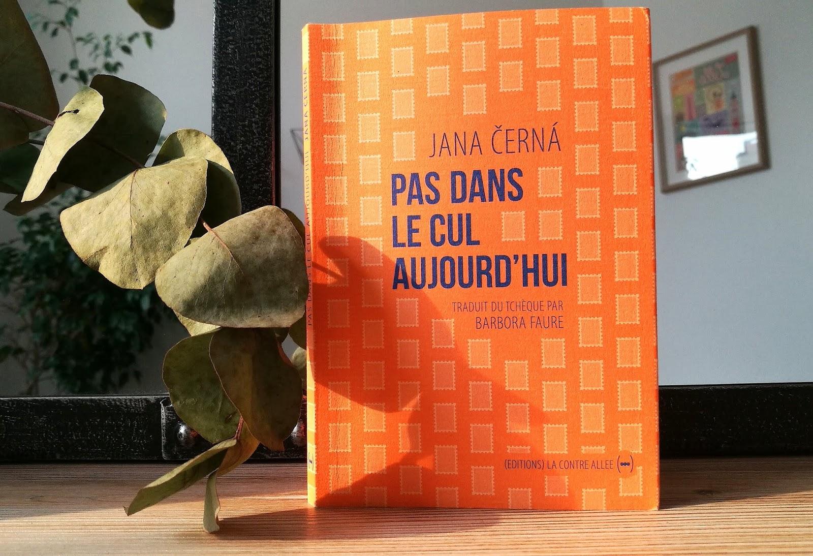 Pas Dans Le Cul Aujourdhui De Jana černá Lettre