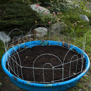 DIY Kiddie Pool Garden