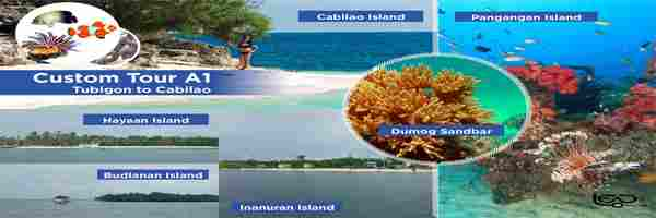 Custom Tour Island Experience in Cabilao Pangangan Calape and Loon Bohol Philippines 2018  and perfect for diving