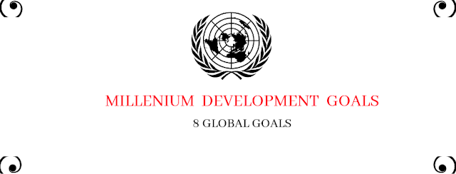 Short question on Millenium Development Goals